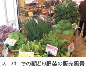 スーパーでの朝どり野菜の販売風景