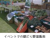 イベントでの朝どり野菜販売